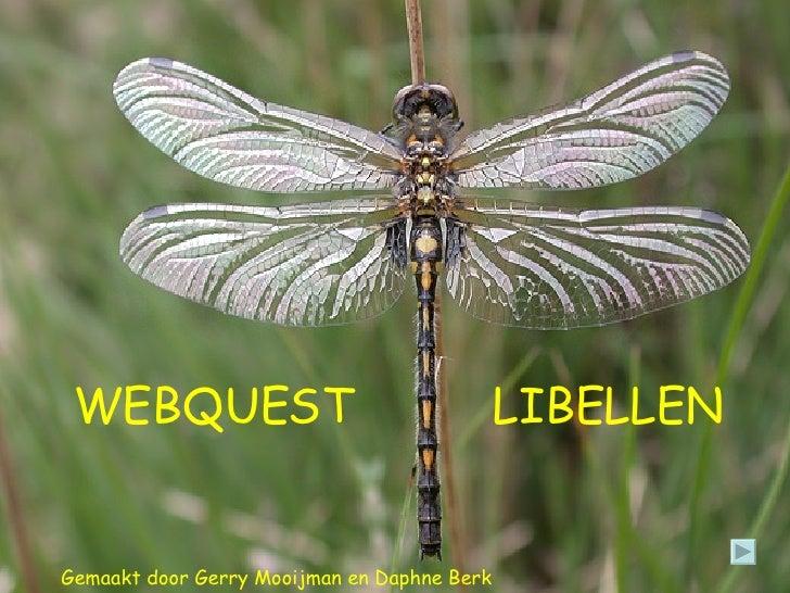 Gemaakt door Gerry Mooijman en Daphne Berk WEBQUEST LIBELLEN