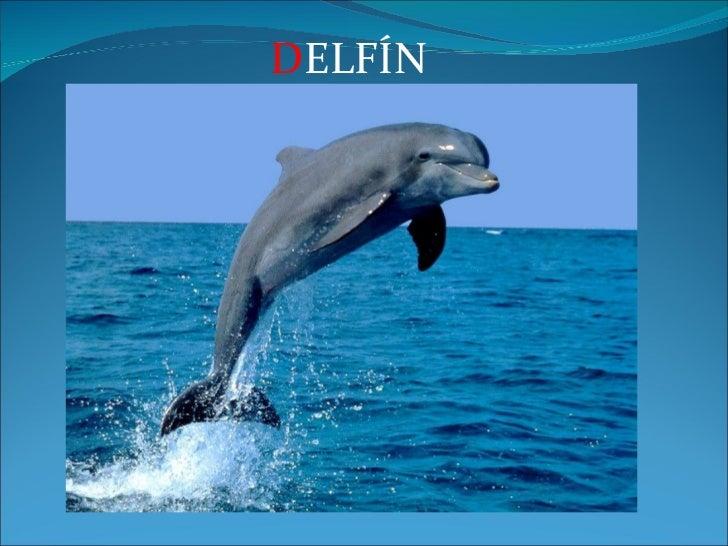 D ELFÍN