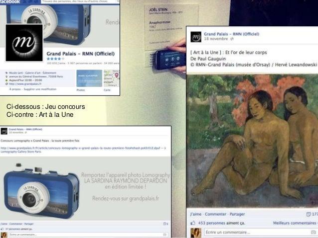 Commentaires d'utilisateurs Facebook sur la page RMNGrand Palais