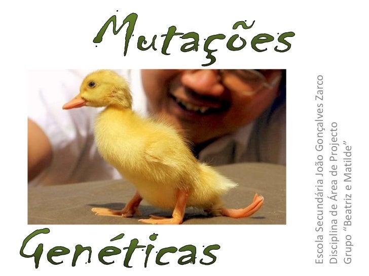 """Mutações<br />Genéticas<br />Escola Secundária João Gonçalves Zarco<br />Disciplina de Área de Projecto<br />Grupo """"Beatri..."""