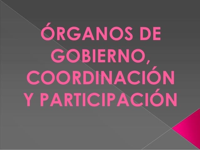 ÓRGANOS DE GOBIERNO, COORDINACIÓN Y PARTICIPACIÓN