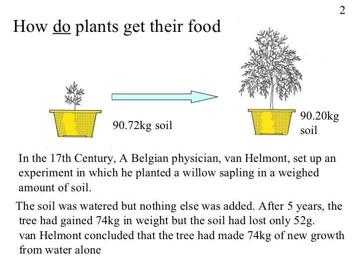 Van helmont experiments photosynthesis john friedmann world city hypothesis