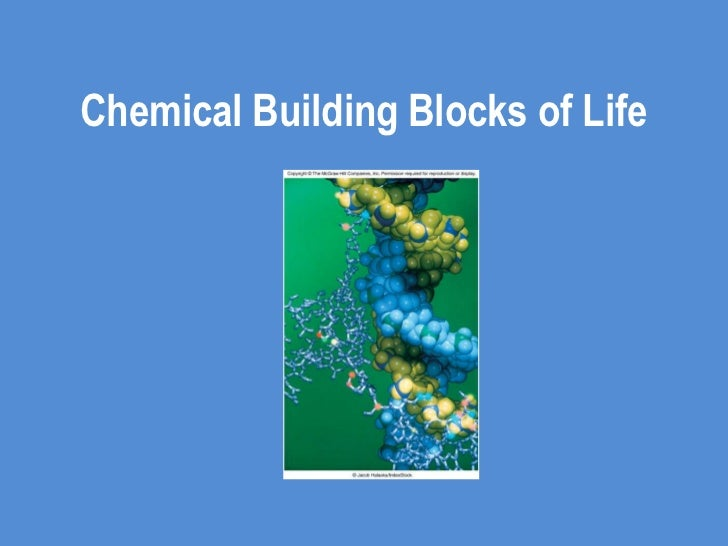 Chemical Building Blocks of Life<br />
