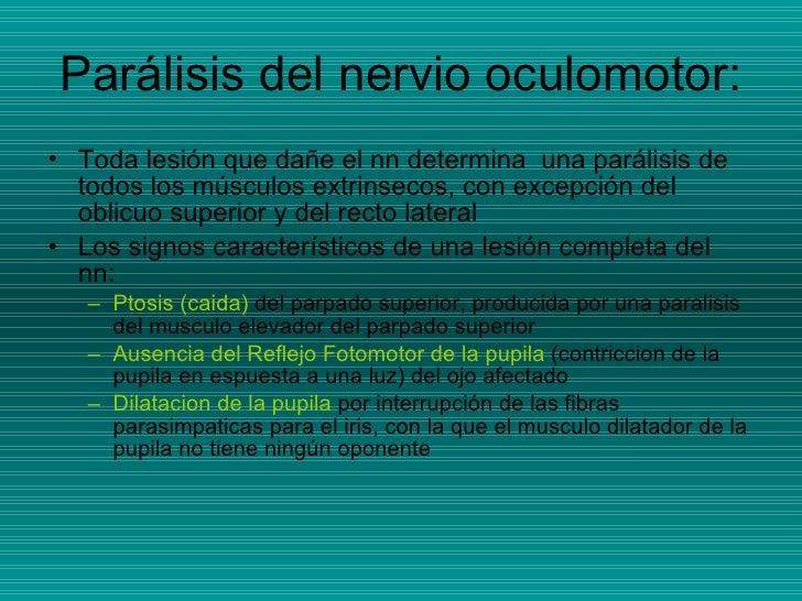 Parálisis del nervio oculomotor: <ul><li>Toda lesión que dañe el nn determina  una parálisis de todos los músculos extrins...