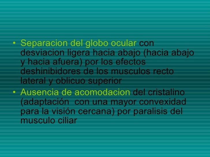 <ul><li>Separacion del globo ocular  con desviacion ligera hacia abajo (hacia abajo y hacia afuera) por los efectos deshin...
