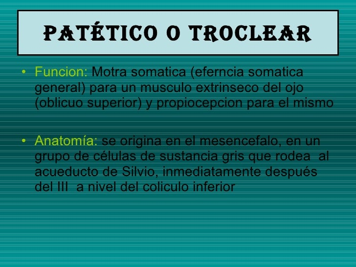 Patético O troclear <ul><li>Funcion:  Motra somatica (eferncia somatica general) para un musculo extrinseco del ojo (oblic...