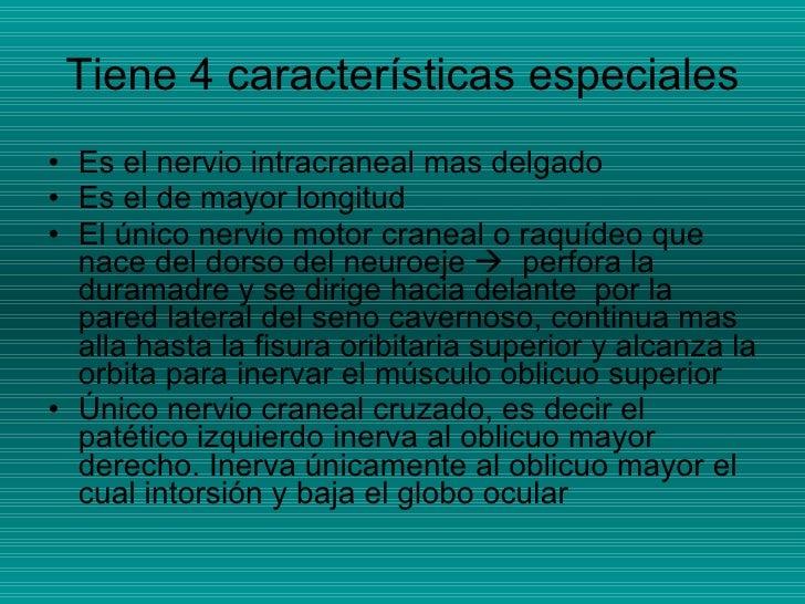 Tiene 4 características especiales <ul><li>Es el nervio intracraneal mas delgado </li></ul><ul><li>Es el de mayor longitud...