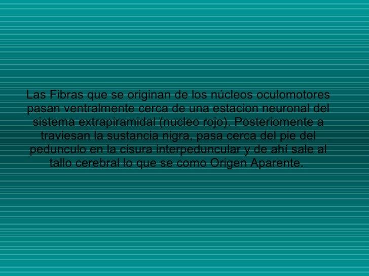 Las Fibras que se originan de los núcleos oculomotores pasan ventralmente cerca de una estacion neuronal del sistema extra...
