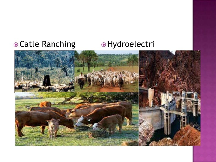 Catle Ranching<br />Hydroelectri desert<br />