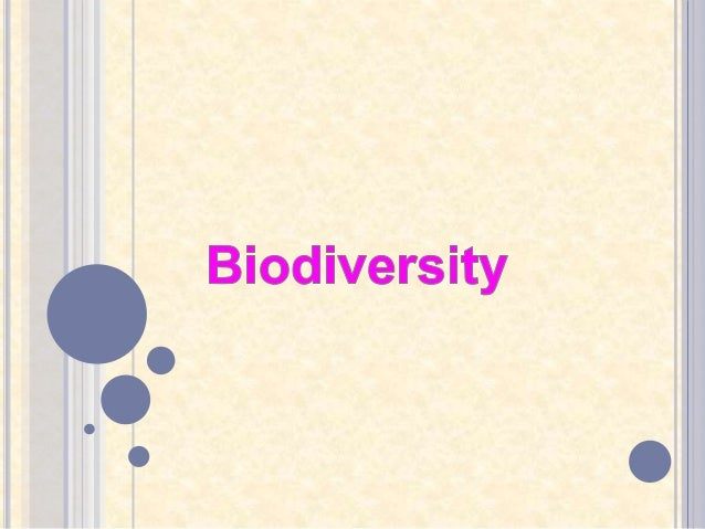 essay on biodiversity importance threats and conservation Biodiversity is an important global issue appropriate conservation and sustainable development strategies attempt to recognize this as being much of the world's marine biodiversity face threats from human and activities as well as natural it is feared that very soon, many.