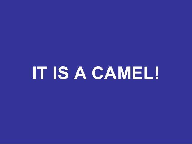 IT IS A CAMEL!