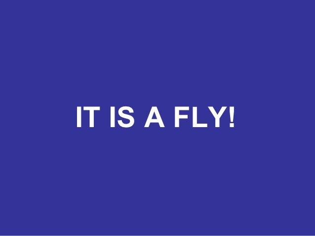 IT IS A FLY!