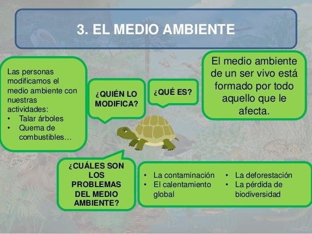 Medio ambiente by ra l for Medio en el que habitan los arboles