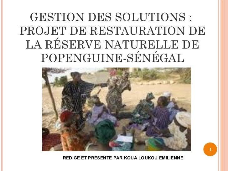 GESTION DES SOLUTIONS:PROJET DE RESTAURATION DE LA RÉSERVE NATURELLE DE   POPENGUINE-SÉNÉGAL                             ...