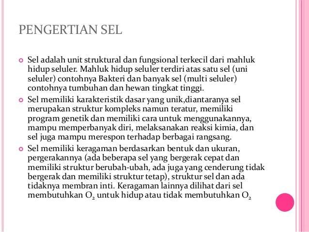 Powerpoint sel kel. 3