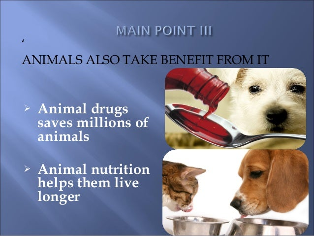 animal testing for pharmaceuticals ethical or Animals testing: is it ethical many animal rights activists believe that testing on animals is cruel and inhumane (rowan, 1997) and actively protest against pharmaceutical companies using animals in their research (rowan, 1997) my blog is going to go over a few of their objections.