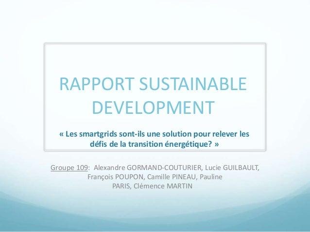 RAPPORT SUSTAINABLE  DEVELOPMENT  « Les smartgrids sont-ils une solution pour relever les  défis de la transition énergéti...