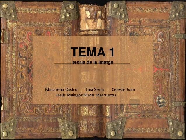 TEMA 1 teoria de la imatge Macarena Castro Laia Serra Celeste Juan Jesús MalagónMaria Marruecos