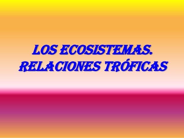 Los ecosistemas. Relaciones tróficas