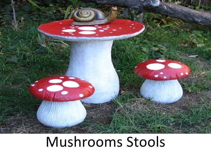 Mushrooms Stools