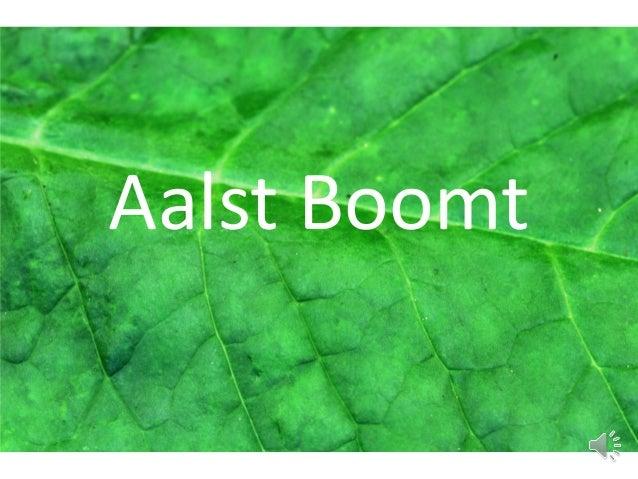 Aalst Boomt