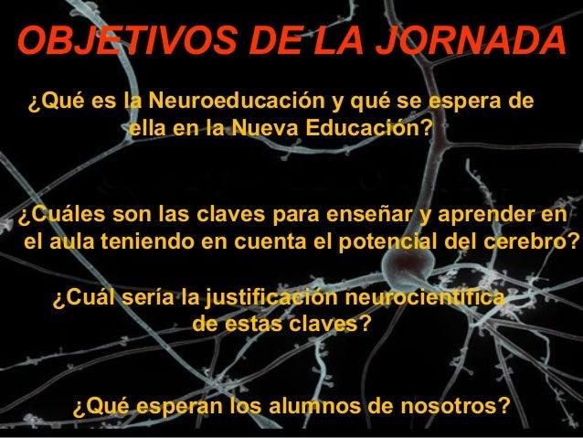 Neuroeducaci U00f3n