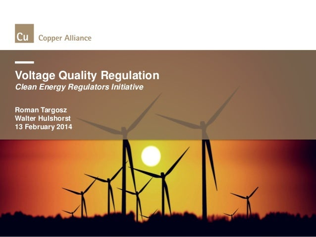 Voltage Quality Regulation Clean Energy Regulators Initiative Roman Targosz Walter Hulshorst 13 February 2014