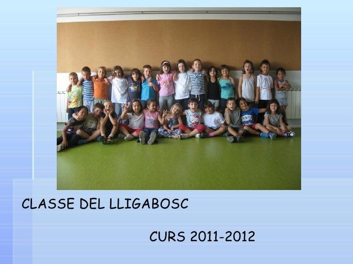 CLASSE DEL LLIGABOSC               CURS 2011-2012
