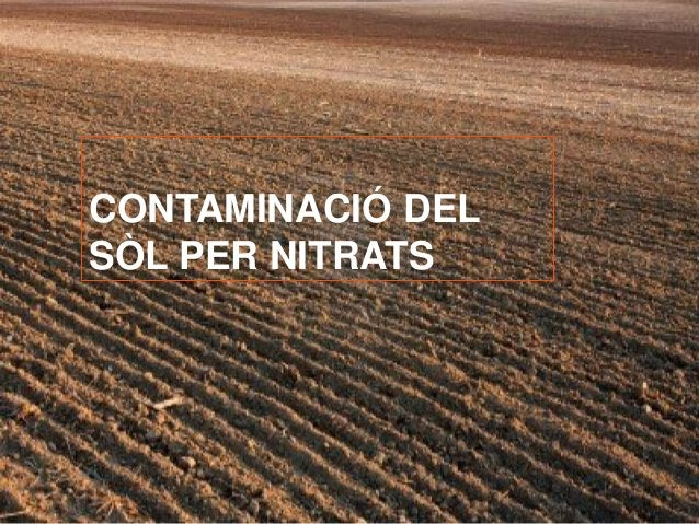CONTAMINACIÓ DEL  SÒL PER NITRATS
