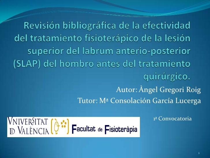 Autor: Àngel Gregori RoigTutor: Mª Consolación García Lucerga                      1ª Convocatoria                        ...