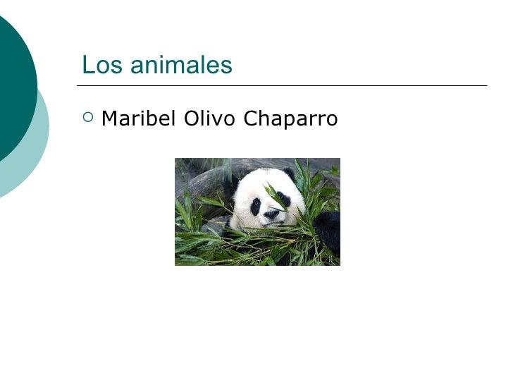 Los animales <ul><li>Maribel Olivo Chaparro </li></ul>