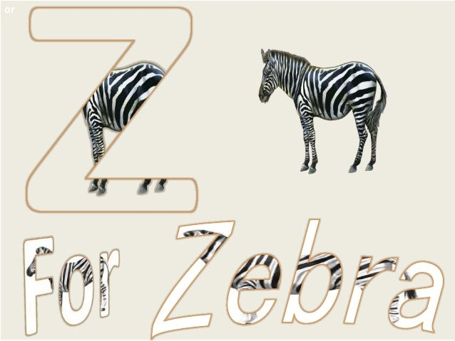 how to learn a for apple to z for zebra alphabets see say learn a t