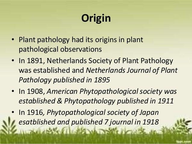 Worldwide development of plant pathology as a profession