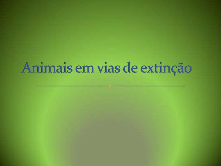 Animais em vias de extinção<br />