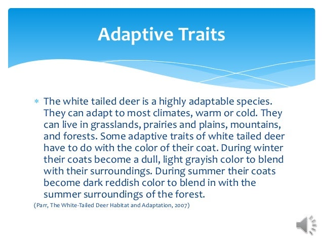  The white tailed deer is a highly adaptable species. They can adapt to most climates, warm or cold. They can live in gra...