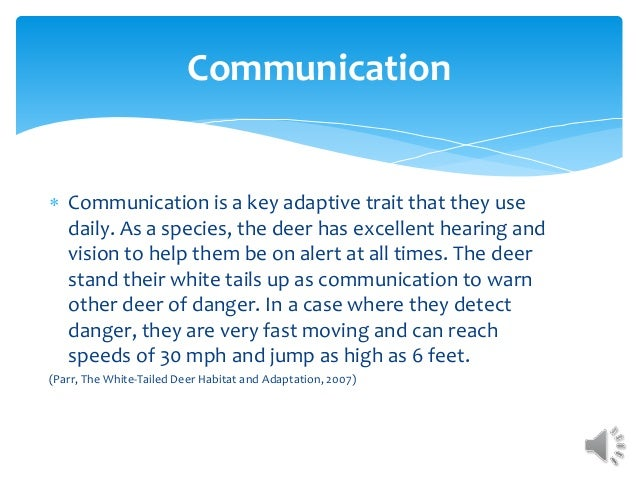 Communication  Communication is a key adaptive trait that they use daily. As a species, the deer has excellent hearing an...