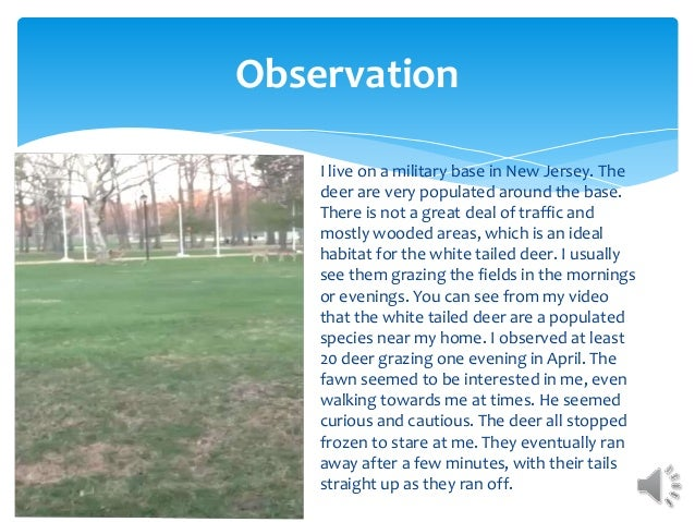 Observation I live on a military base in New Jersey. The deer are very populated around the base. There is not a great dea...