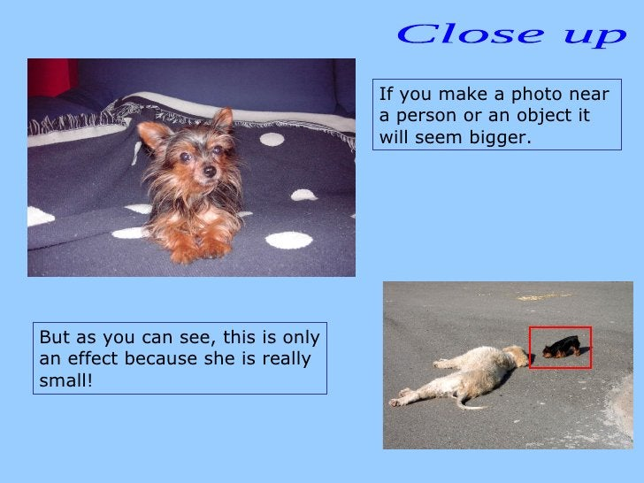 Close up If you make a photo near a person or an object it will seem bigger.  But as you can see, this is only an effect b...