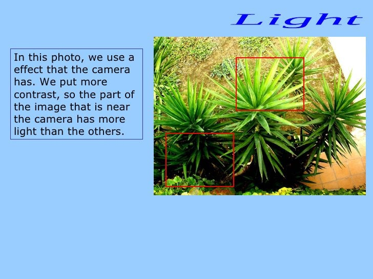 Light In this photo, we use a effect that the camera has. We put more contrast, so the part of the image that is near the ...