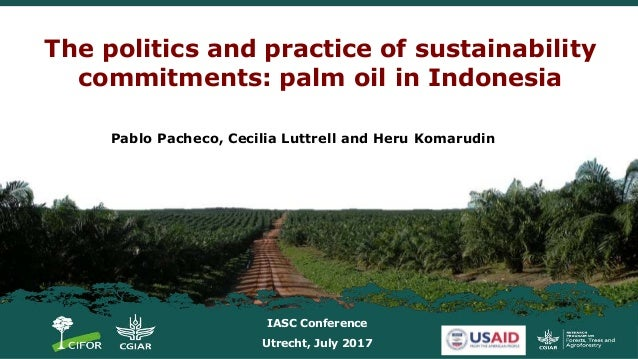 The politics and practice of sustainability commitments: palm oil in Indonesia Pablo Pacheco, Cecilia Luttrell and Heru Ko...