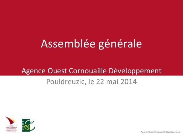 Agence Ouest Cornouaille Développement Assemblée générale Agence Ouest Cornouaille Développement Pouldreuzic, le 22 mai 20...