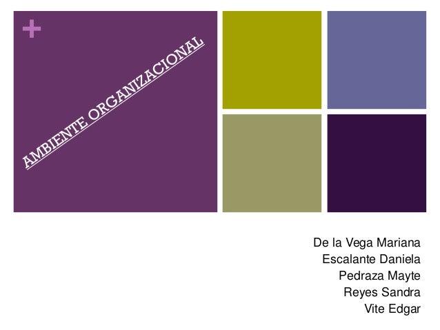 + De la Vega Mariana Escalante Daniela Pedraza Mayte Reyes Sandra Vite Edgar