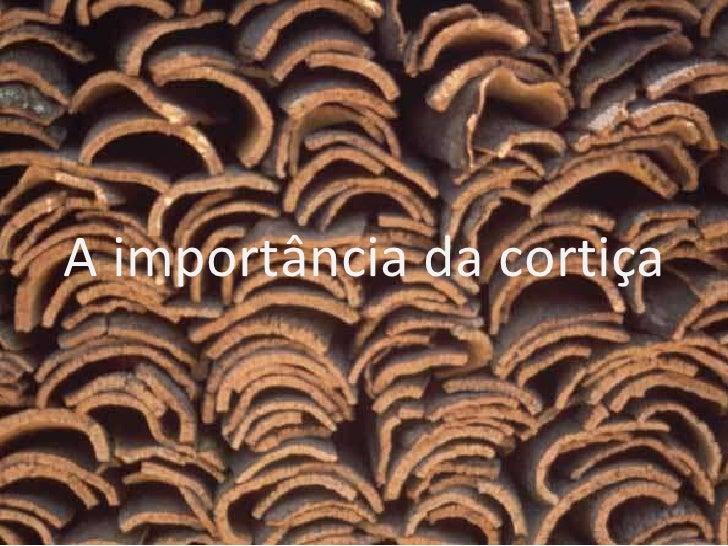 A importância da cortiça