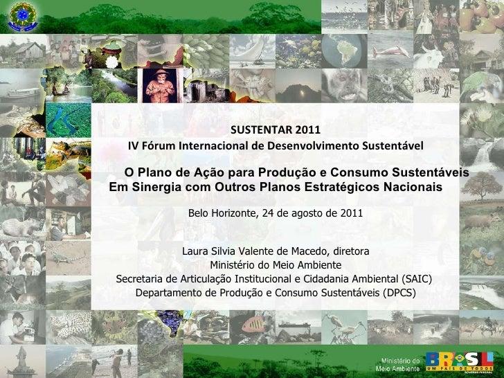 Ministério do Meio Ambiente Secretaria de Articulação Institucional e Cidadania Ambiental (SAIC) Departamento de Produção ...