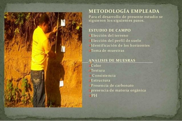 Descripcion de un perfil de suelo for Perfil del suelo wikipedia