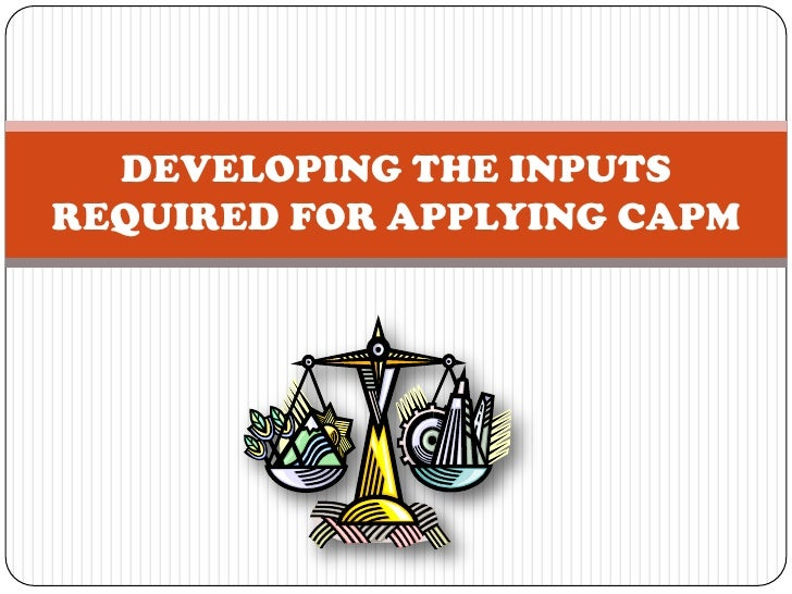 DEVELOPING THE INPUTSREQUIRED FOR APPLYING CAPM