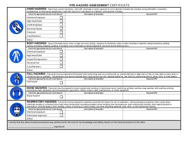 ppe assessment form - Narsu.ogradysmoving.co