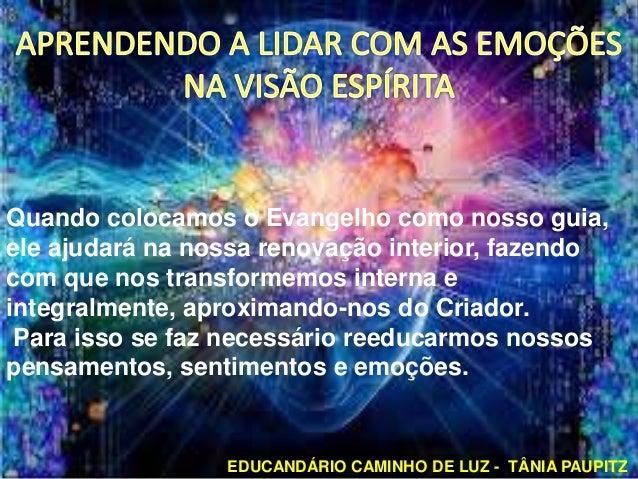 EDUCANDÁRIO CAMINHO DE LUZ - TÂNIA PAUPITZ Quando colocamos o Evangelho como nosso guia, ele ajudará na nossa renovação in...