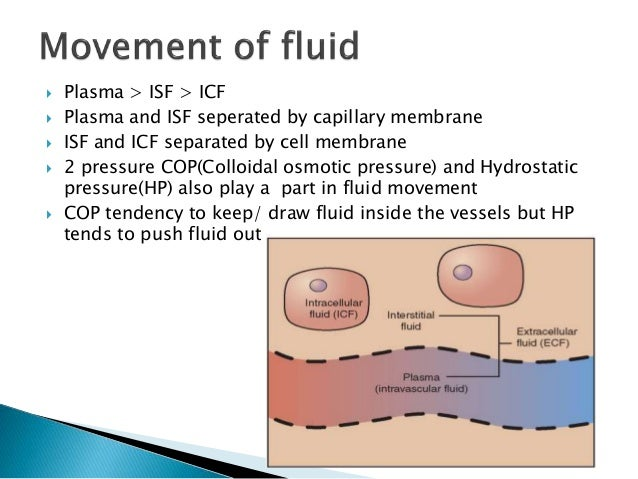 intracellular and extracellular fluid pdf
