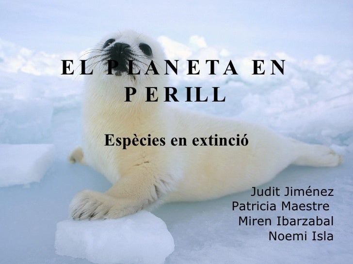 <ul><li>Judit Jiménez Morales </li></ul><ul><li>Patricia Maestre Domínguez </li></ul><ul><li>Miren Ibarzabal Rivas </li></...